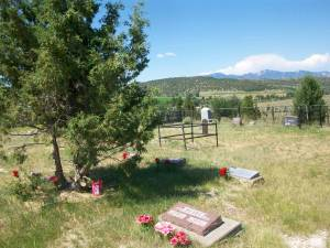 Montana's historic Nevada City Cemetery needs your help to preserve and protect it. support our work at our Crowdrise campaign.