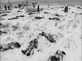 Wounded Knee Massacre, Dec. 29,1890